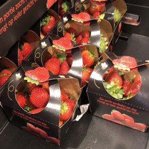 Aardbeienbakjes met hengsel